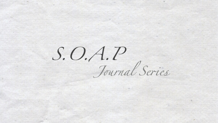 "S.O.A.P Series – ""Feed Yourself"""