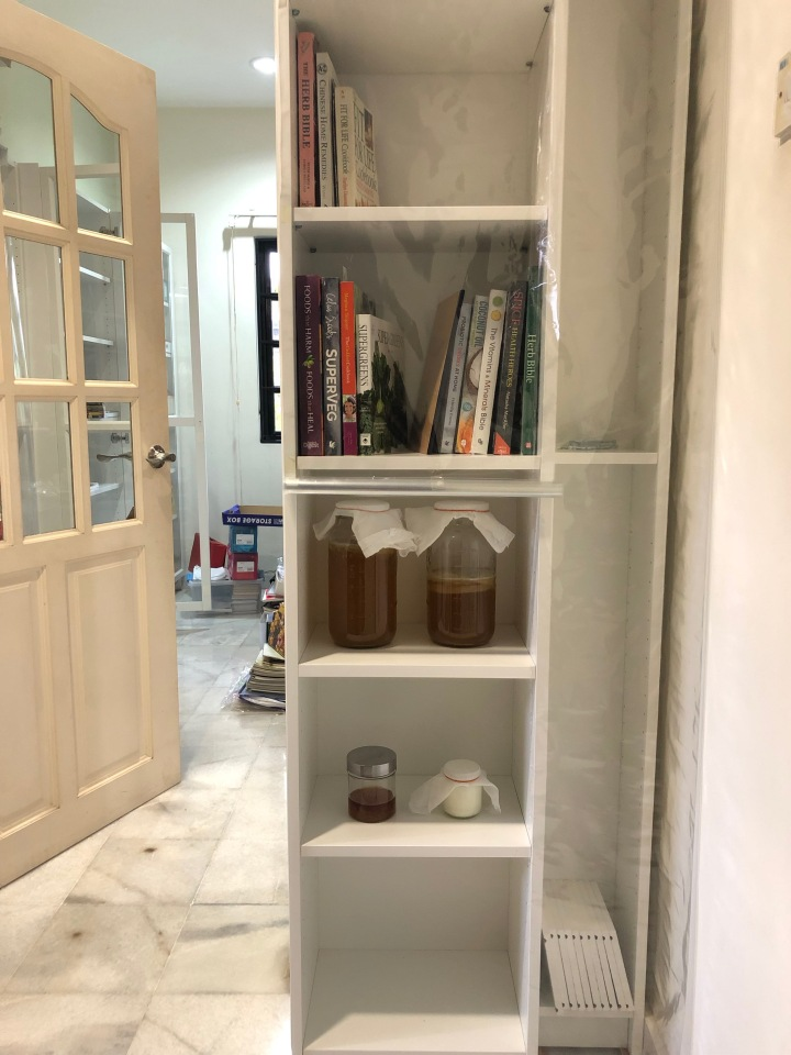 First Project 2019: Declutter My Kitchen – Segregate, Recycle, Dispose || Shu Yi